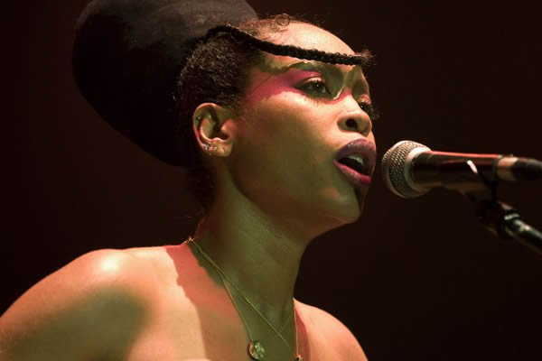 Erykah Badu faces criticism over Africa performances