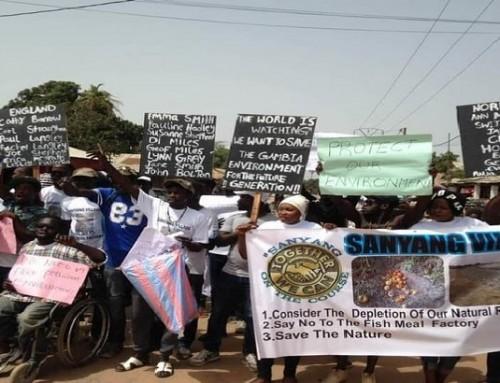 Sanyang environmentalists oppose resumption of fish mill factory